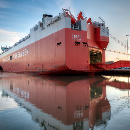 Reduce cost and risks with Roro